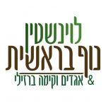 לוגו לוינשטין